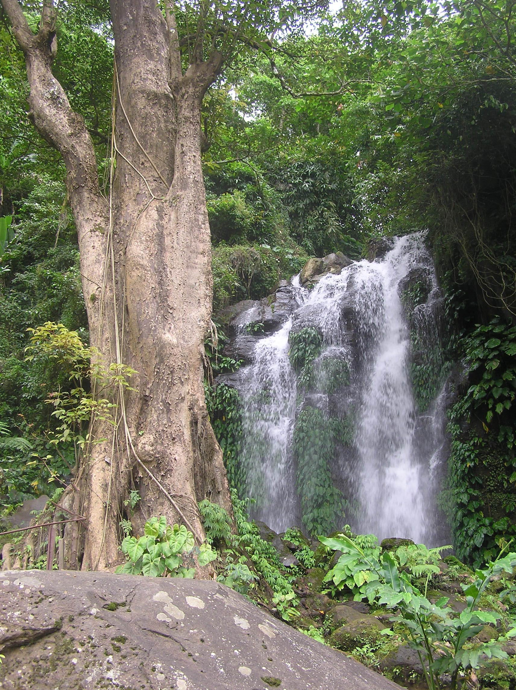 Pataan Mountain Resort