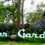 "ANP JOINS AYALA NORTH POINT' S LAUNCHING OF ""THE GARDENS"""