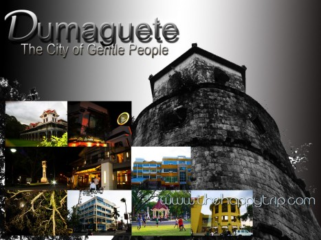 List of Hotels in Dumaguete City,DUMAGUETE CITY HOTELS