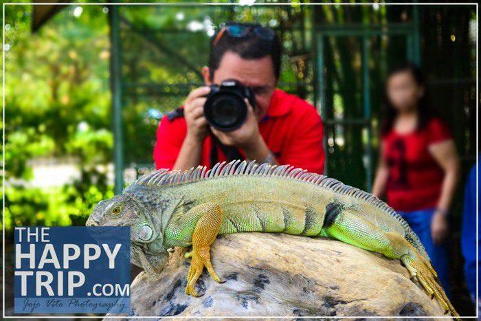 Davao Crocodile Farm