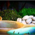 SUTUKIL…AGAIN AND AGAIN