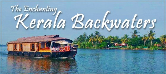 backwaters cover