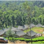 An Overnight Stay at Suryanelli Camp, Munnar