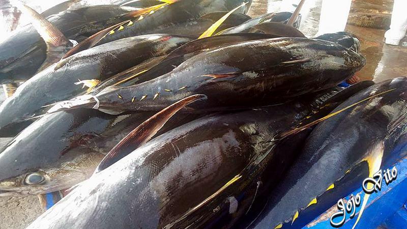 GENERAL SANTOS CITY FISH PORT COMPLEX